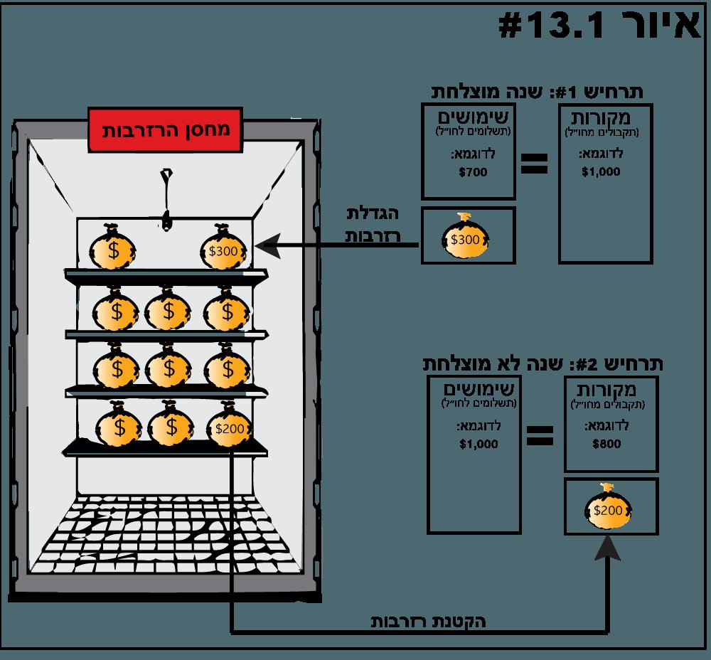 השימוש בנכסי הרזרבה - איור 13.1